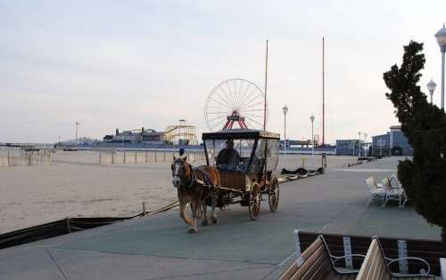 Horse & Carriage Rides Along the Boardwalk Photo