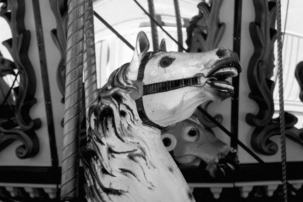 carousel_horse_black_and_wite-94